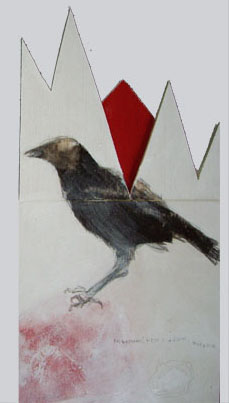 crows SOLD