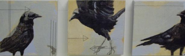 Judies crows SOLD